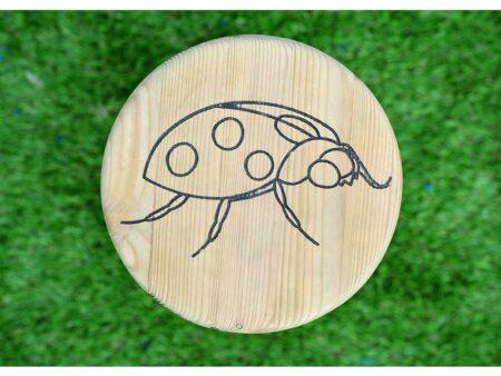 Ladybird product image 1