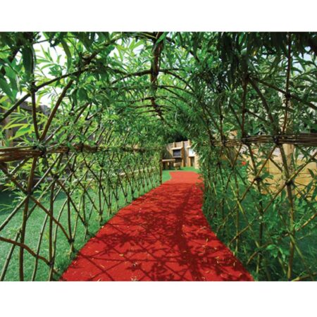 Living Willow Tunnel product image 1