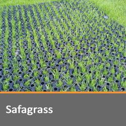 Safagrass Matting